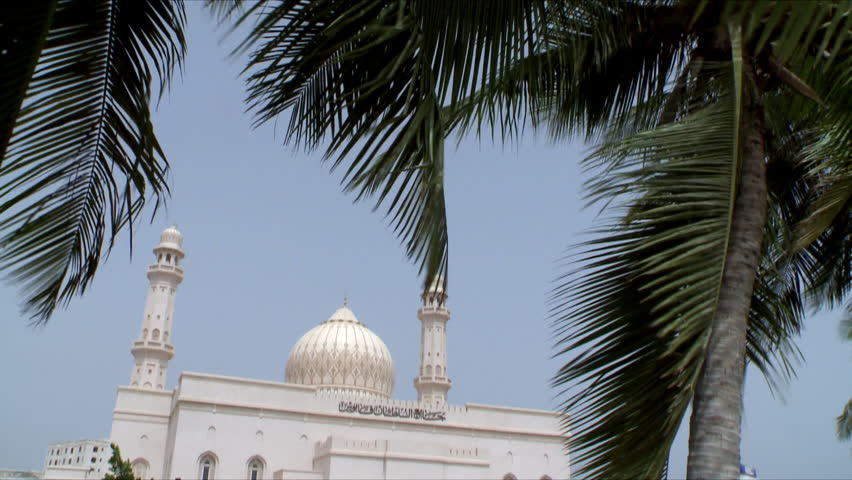 A tilt down from green date trees swaying in the wind to a white mosque in Salalah, Oman