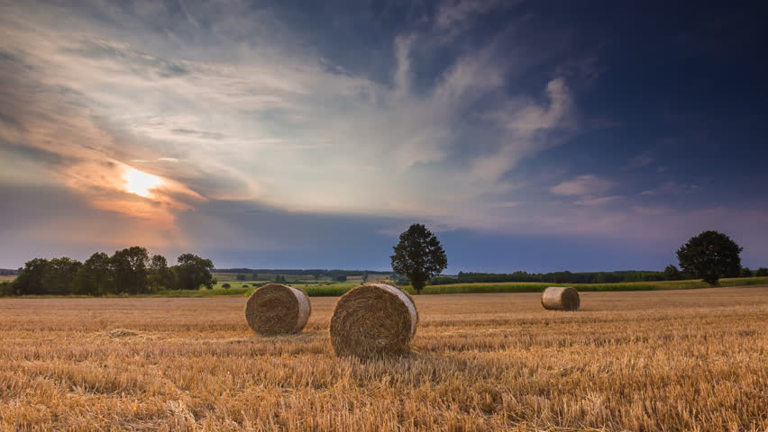 Stubble field with straw bales under cloudy sky. 4k timelapse 4096x2304 #11202287