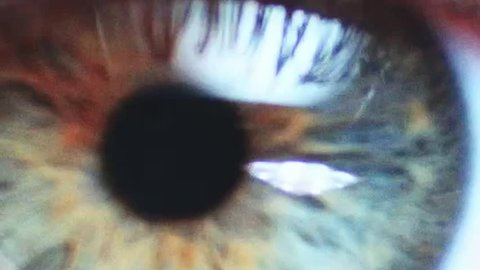 Macro Close-up eye blinking. Slow Motion, 120 fps, Zoom. Young Woman is opening and closing her beautiful eye.