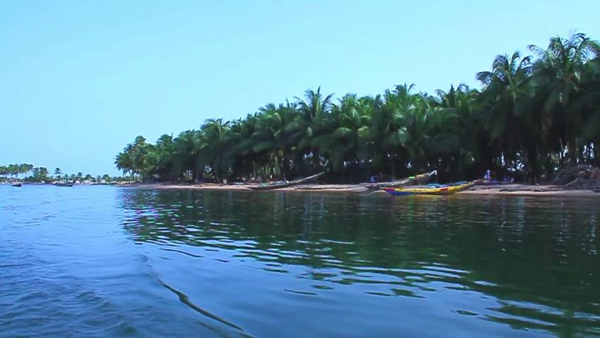 Coconut trees view, Ada Volta Lake Ghana