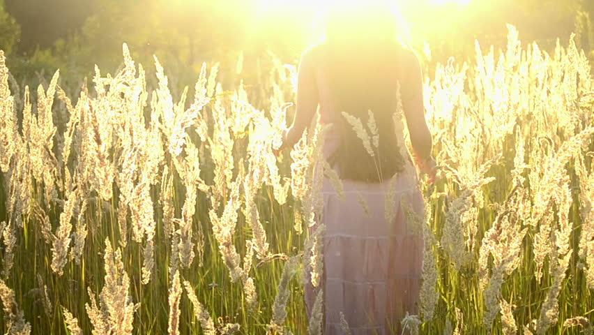 tall grass field sunset. Stock Video Of Young Woman, Brunette Girl With Long   11581637 Shutterstock Tall Grass Field Sunset E