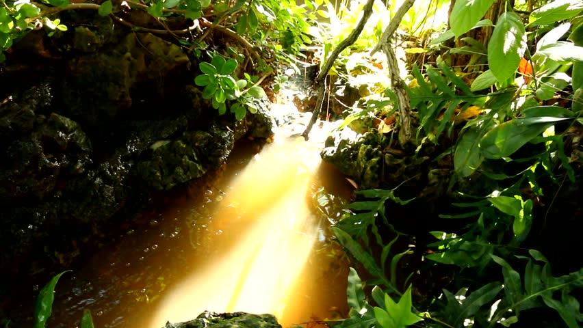 Waterfall in chiangmai Thailand   Shutterstock HD Video #11684549
