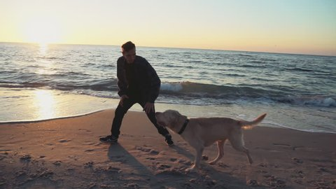 young man playing with his dog on the beach slow motion