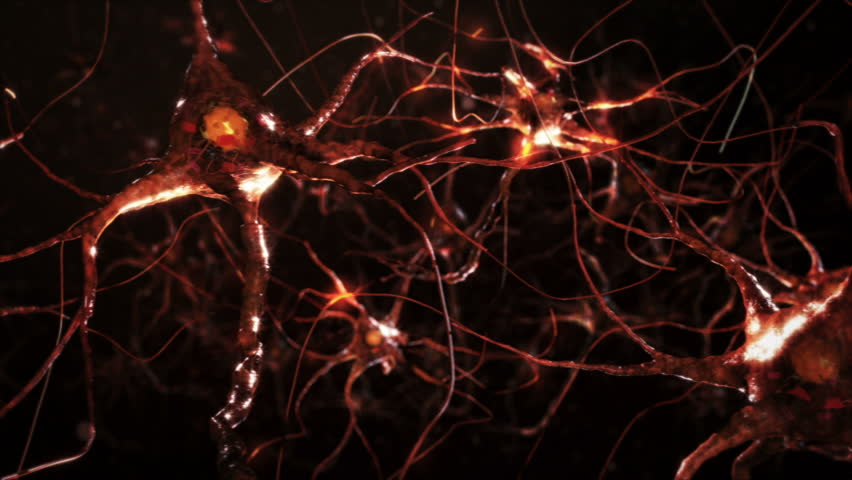 Neuron cells. Network connections. Orange. Synapse. Brain. 2 videos in 1 file. Flying across a neural network, electric impulses passes by it. Zoom out and dolly. More options in my portfolio.   Shutterstock HD Video #11748797