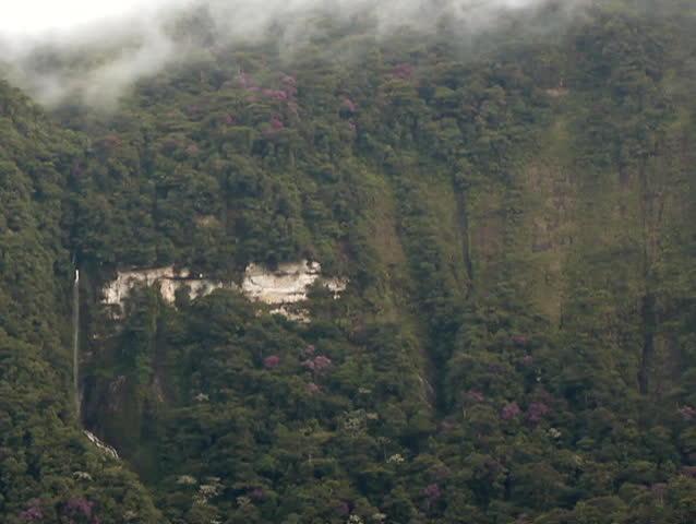 Waterfall on a vertical cliff in rainforest, Ecuador | Shutterstock HD Video #1175107