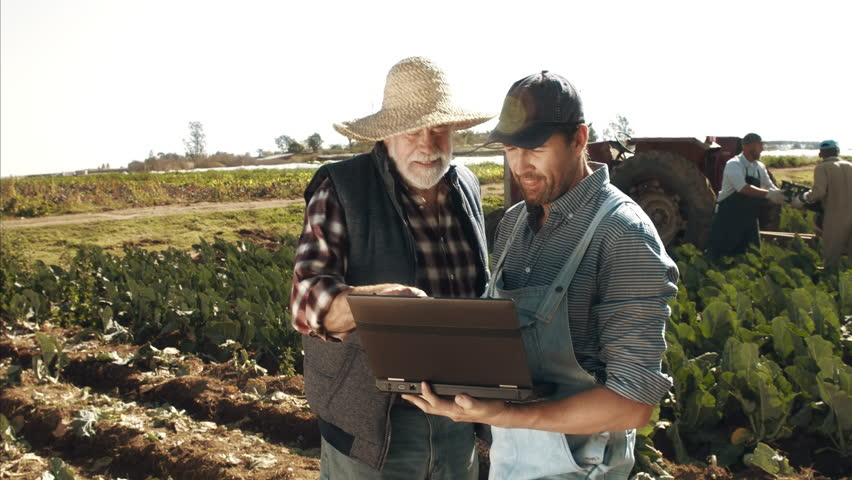 4k wide shot of farming father and son checking on production progress with laptop computer and wifi connection.  | Shutterstock HD Video #11900039
