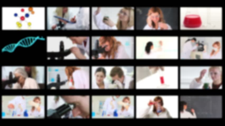 Montage of scientists conducting experiments in a lab
