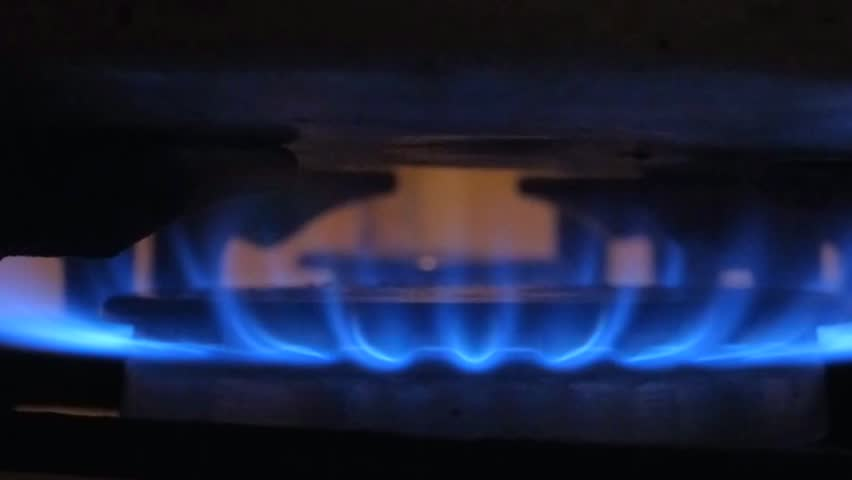 Blue flame gas stove. Close-up