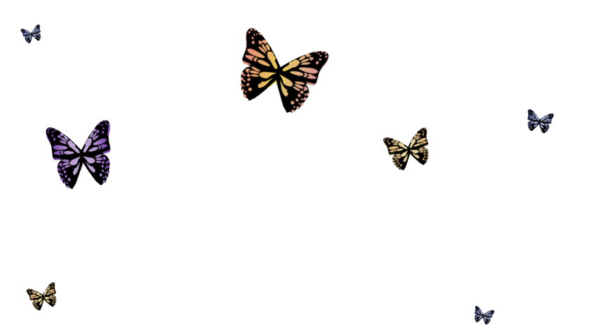 Butterflies Flutter On a White Stock Footage Video (100% Royalty-free)  12323327 | Shutterstock