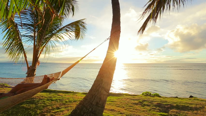 Hammock And Palm Trees On The Beach Stock Footage Video