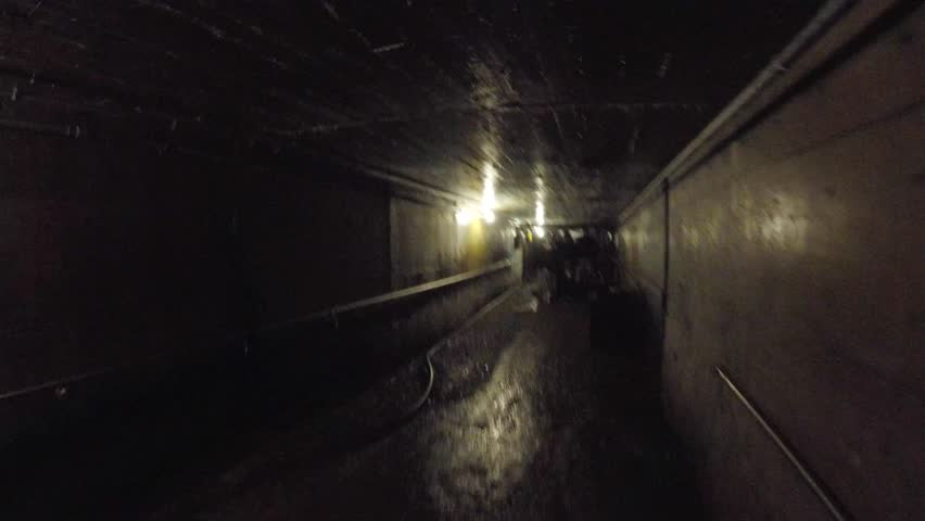 People inside a deep and very dark coal mine under the ocean in Nova Scotia | Shutterstock HD Video #12498077