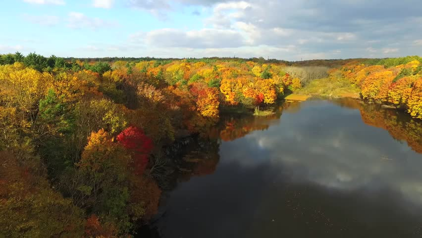 Aerial: The closer to the autumnal heyday in multirotor / October 19, 2015 to the shooting in Japan of Forest Park / The arrival from the sky around the autumn leaves in beautiful pond.