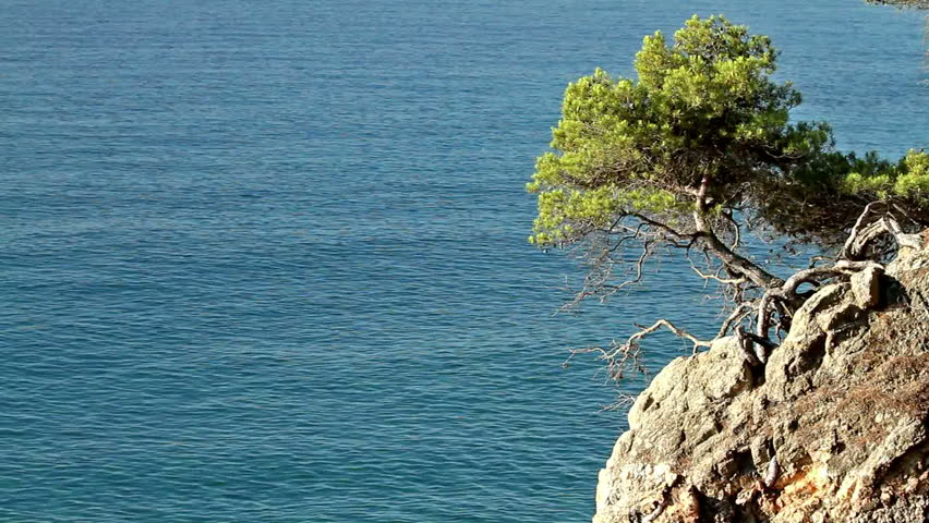 Detail of the Spanish coast (Costa Brava)