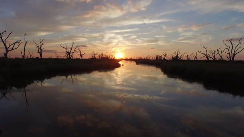 A beautiful southern Louisiana sunset over a bayou and stretch of water dotted with silhouettes of dead trees. #12648227