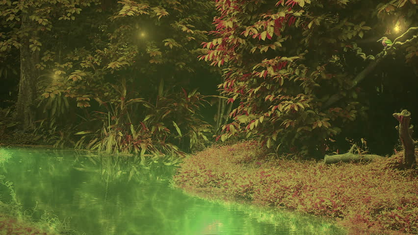 Enchanted forest with kingfisher flying down the glowing water to catch fish