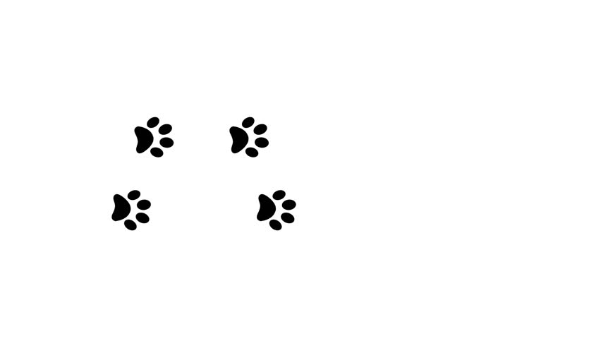 Dog Paw Prints Black And White Images
