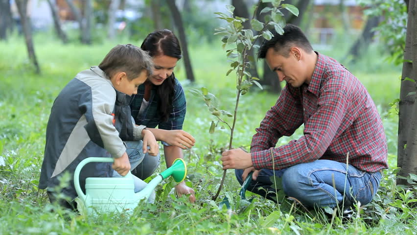 Family of three planting a new tree in park