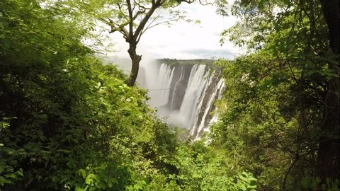 Break through the foliage to reveal beautiful Victoria Falls.