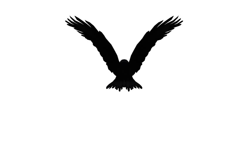 Eagle flying in the sky tattoo