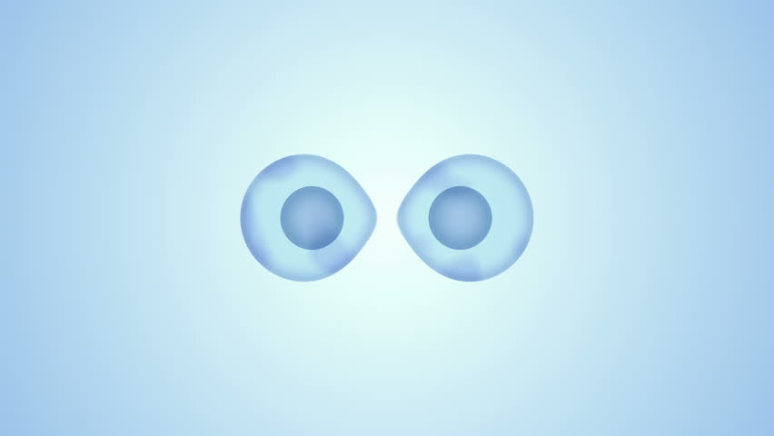 Binary Fission Transparent Cell Division 3D Blue Motion Graphic Video | Shutterstock HD Video #14038037