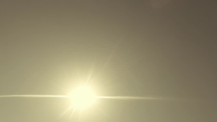 Seagulls Flying Against The Blue Sky And Sun View from the bottom up | Shutterstock HD Video #14078297