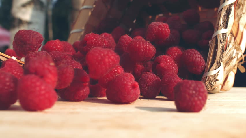 Basket of ripe raspberries poured on a wooden table, slow motion