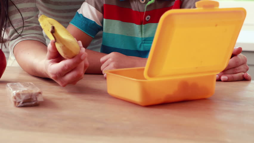 Mother preparing sons lunch box at home