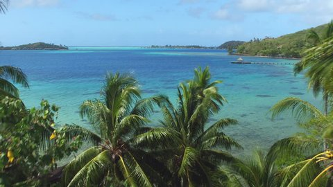 4K AERIAL: Flying over exotic palm trees towards crystal clear blue lagoon on beautiful tropical island in sunny summer