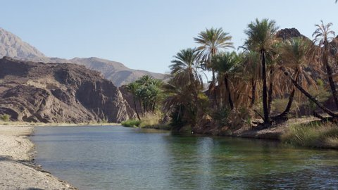 (4k) Beautiful oasis landscape in Wadi Shab (Oman)