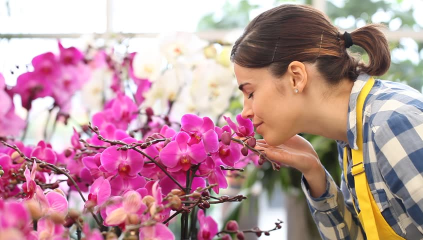 woman walking in the garden of flowers, touches and smells an orchid