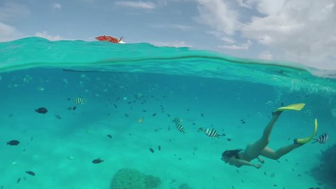 SLOW MOTION HALF UNDERWATER: Young diver woman snorkeling and swimming underwater, exploring tropical reef with beautiful colorful exotic fish in crystal clear lagoon ocean in French Polynesia