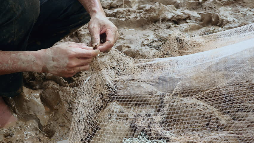 Fisherman removing enmeshed fish from his net and keeping it in a plastic bag ( extreme close up)   Shutterstock HD Video #14991427