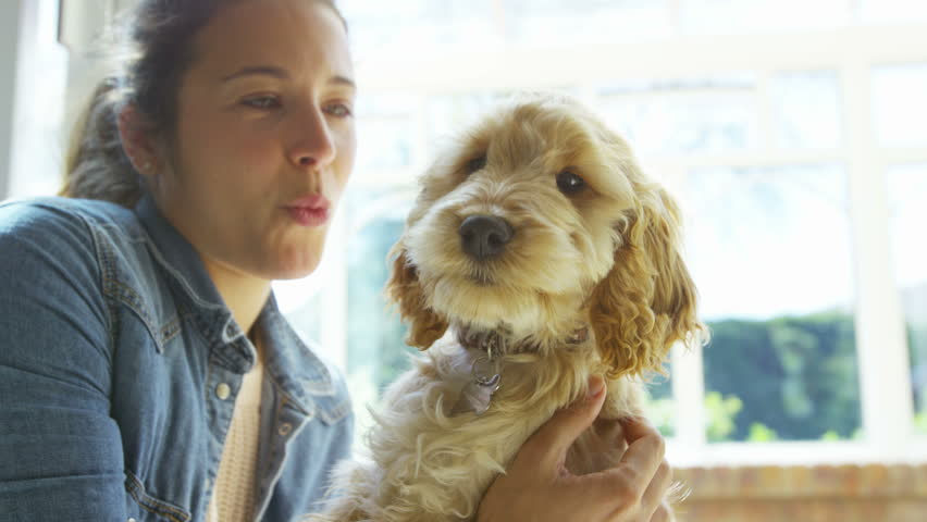 4K Woman relaxing at home with cute young puppy