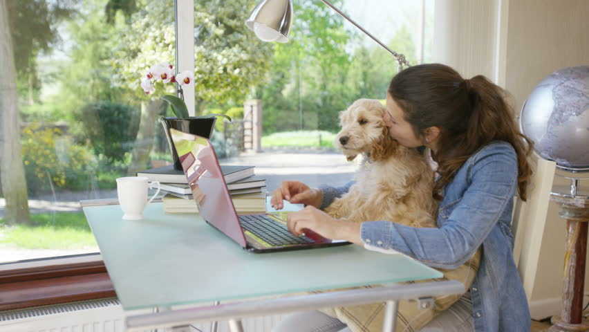 4K Woman working on laptop computer at home with cute puppy