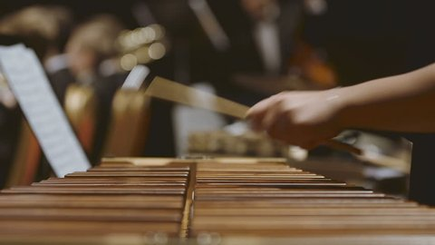 Close-up shot of musician playing xylophone. Female is performing in orchestra. She is hitting drumsticks on percussion instrument during event.