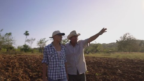 Farming and cultivations in Latin America. Hispanic farmer walking with his son in a cultivated field at sunset. The man embraces the teenager and plan the job to be done. Steadicam shot