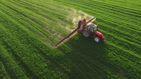Aerial view of tractor spraying wheat field