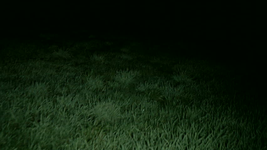 grass field at night. Walking Through Scary Grassy Field At Night.Escaping From Monsters Or Other Stuff The With Darkness All Around. Grass Night I