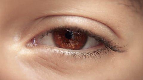 Zoom through eye, optic nerve into brain / neurons. Brown eye. Loopable 4K.