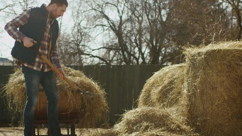 Man is cleaning a farm yard from hay with a pitchfork on a sunny day. Shot on RED Cinema Camera in 4K (UHD).