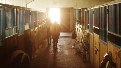 Young jockey girl is walking a horse out of a stable. Shot on RED Cinema Camera in 4K (UHD).