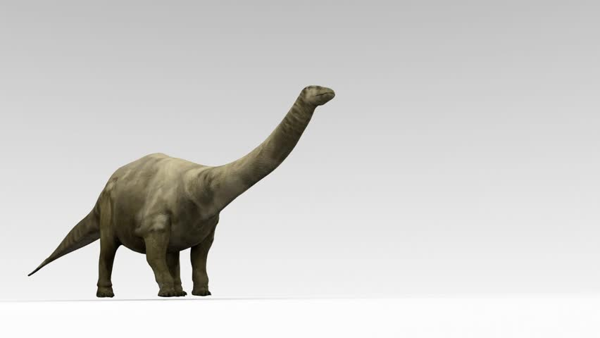 apatosaurusbrontosaurus essay Apatosaurus' enormous tapering tail could serve as a whiplash against any possible attackers their main enemy was allosaurus, which was a ferocious meat-eating dinosaur but very much smaller in size.