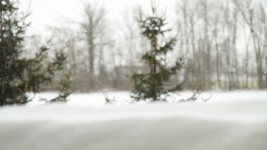 A dolly shot of evergreen trees and snow falling.