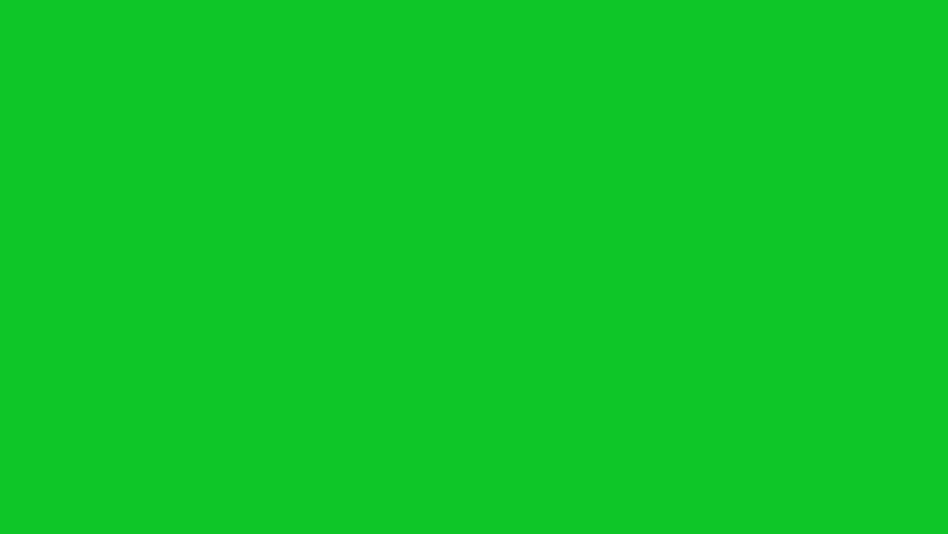fish swimming in front of green screen