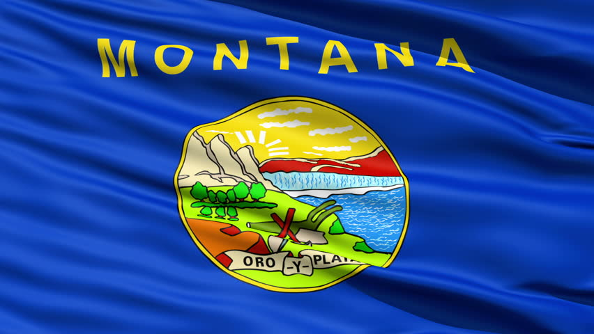 Waving Flag Of The US State of Montana with the official seal containing the