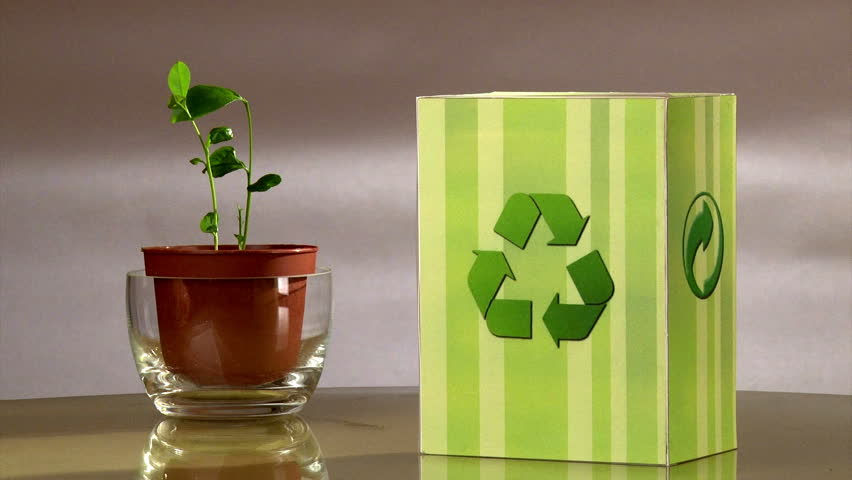 Vote for recycle. Ecology campaign (environmental appeal). Green concept.