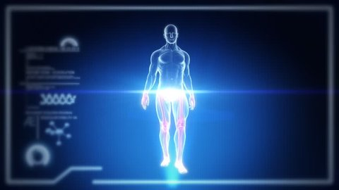Human Full Body Male Anatomy Walking with Touch Screen Scan in 3D x-ray. Realistic Vertical CRT Scanlines - LOOP