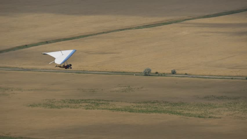 Flight of the hang glider on a background of yellow wheat fields