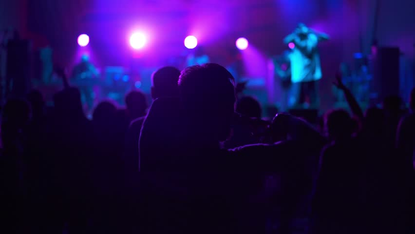 Crowd enjoying night perfomance of musicians, hands up | Shutterstock HD Video #17900227