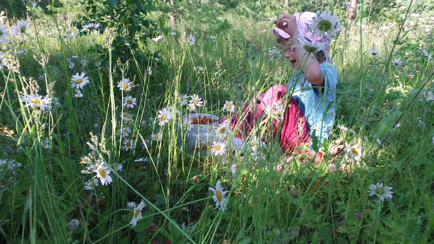 Girl child eats wild strawberry on the meadow. Girl eating strawberries with relish. Tall grass grew on the forest glade. A lot of camomile flowers. Summer sunny day in the forest. #18047947
